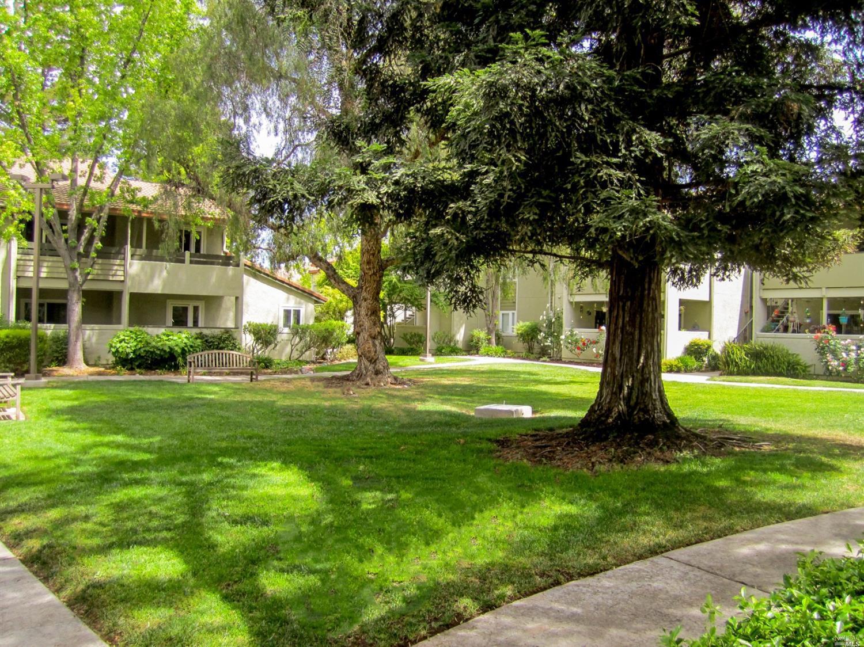 照片拍摄于加利福尼亚州康科德市柯克路261号1505号