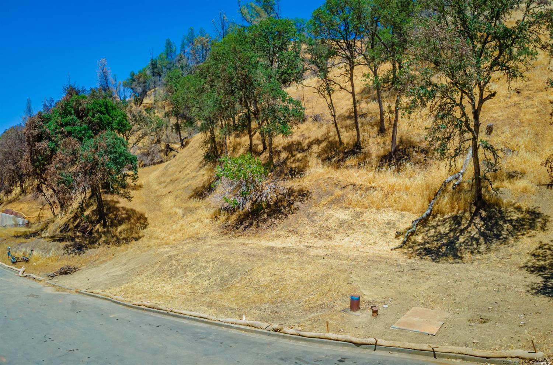 图片1102阿罗约大博士在纳帕,加利福尼亚州