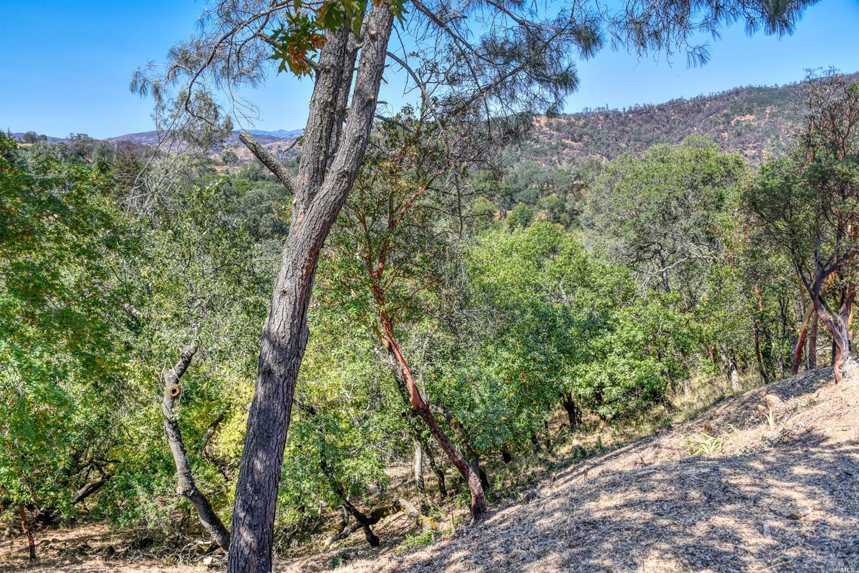 照片0阳光山在纳帕,加利福尼亚州147号