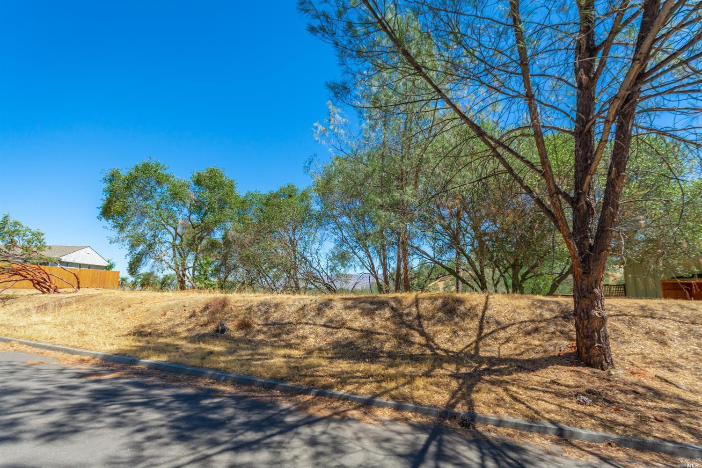 照片814巴伊亚Vista Ct在纳帕,加利福尼亚州