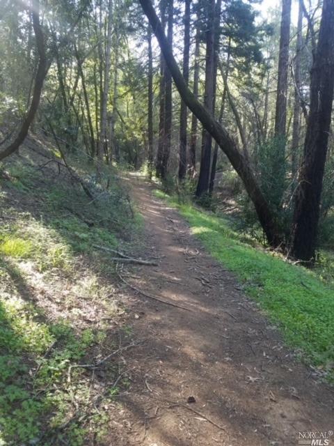 照片0干溪路在纳帕,加利福尼亚州