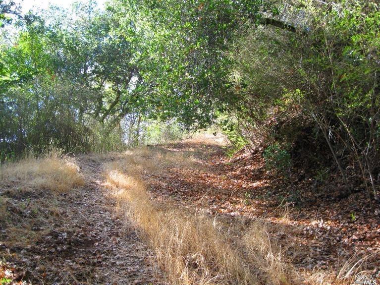 Listing 21701838 : 526  Cascade Drive, Fairfax, CA, 94930  (photo 7)