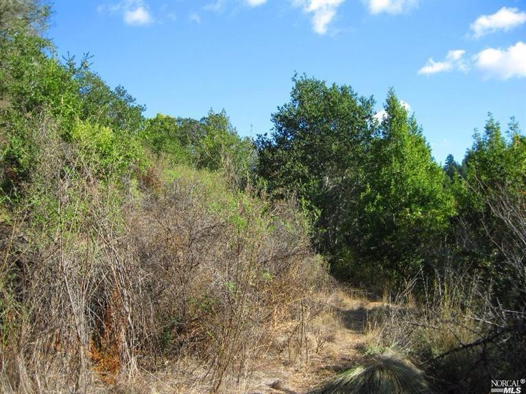 Listing 21701838 : 526  Cascade Drive, Fairfax, CA, 94930  (photo 9)