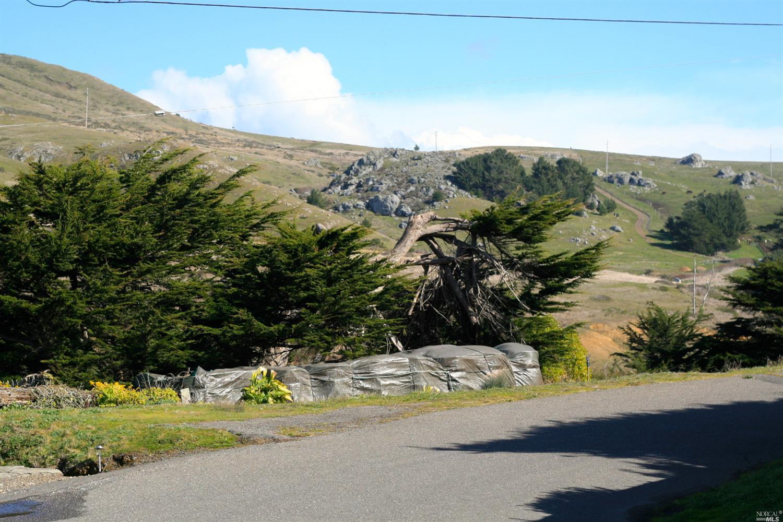 Listing 21303328 : 2980  Lucille Avenue, Bodega Bay, CA, 94923  (photo 4)