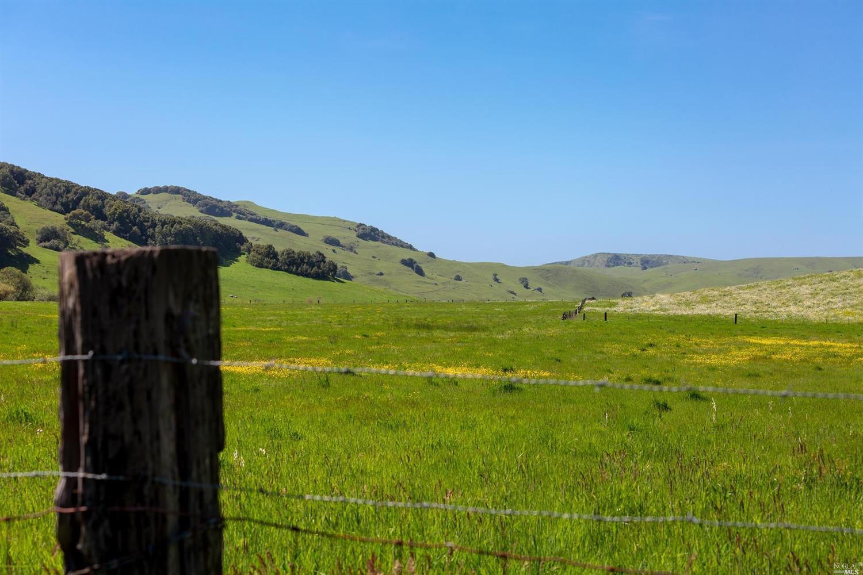 Listing 21909668 : 5325  Chileno Valley Road, Petaluma, CA, 94952  (photo 8)