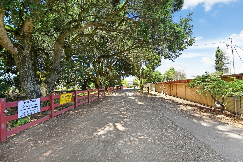Listing 21915283 : 3820  Bodega Avenue, Petaluma, CA, 94952  (photo 3)