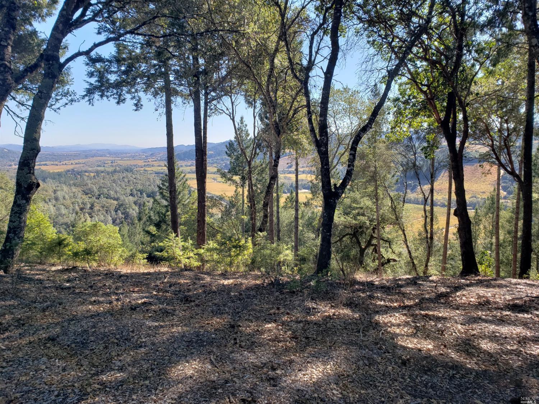 Listing 21927532 : 9860  Dry Creek Road, Healdsburg, CA, 95448  (photo 2)