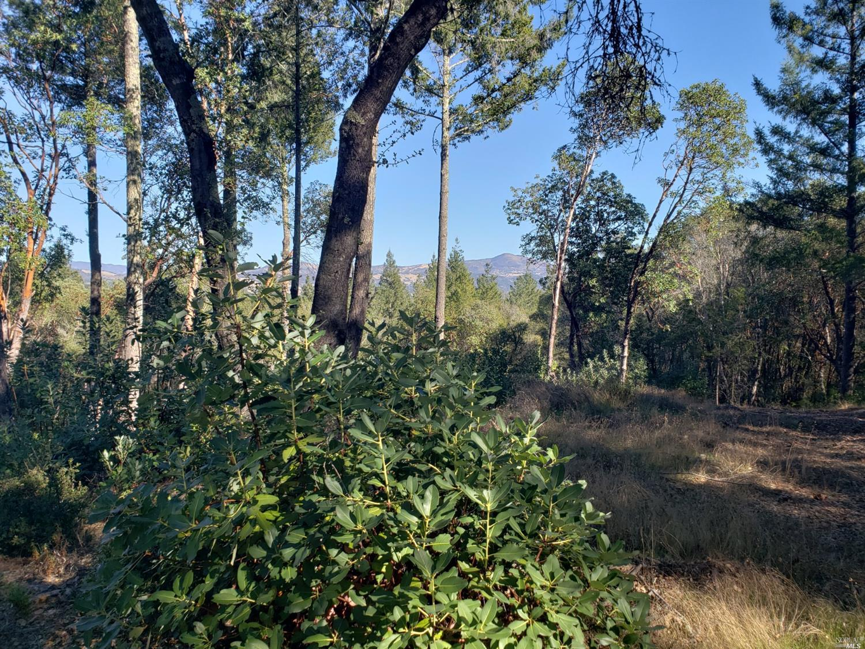 Listing 21927532 : 9860  Dry Creek Road, Healdsburg, CA, 95448  (photo 7)