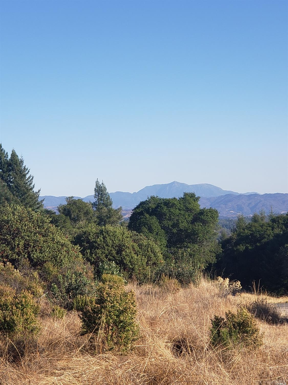 Listing 21926867 : 9695  Dry Creek Road, Healdsburg, CA, 95448  (photo 7)