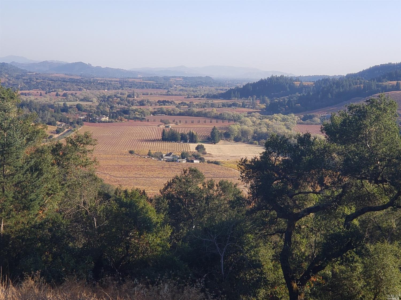Listing 21926867 : 9695  Dry Creek Road, Healdsburg, CA, 95448  (photo 6)