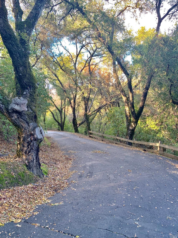 Listing 22001087 : 1765  Trimble Lane, Cloverdale, CA, 95425  (photo 8)
