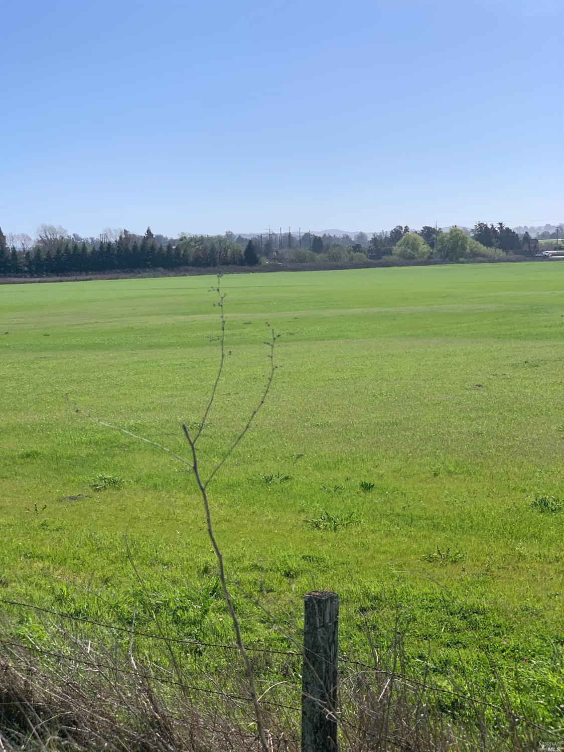 Listing 22004477 : 520  orchard Lane, Penngrove, CA, 94951  (photo 3)