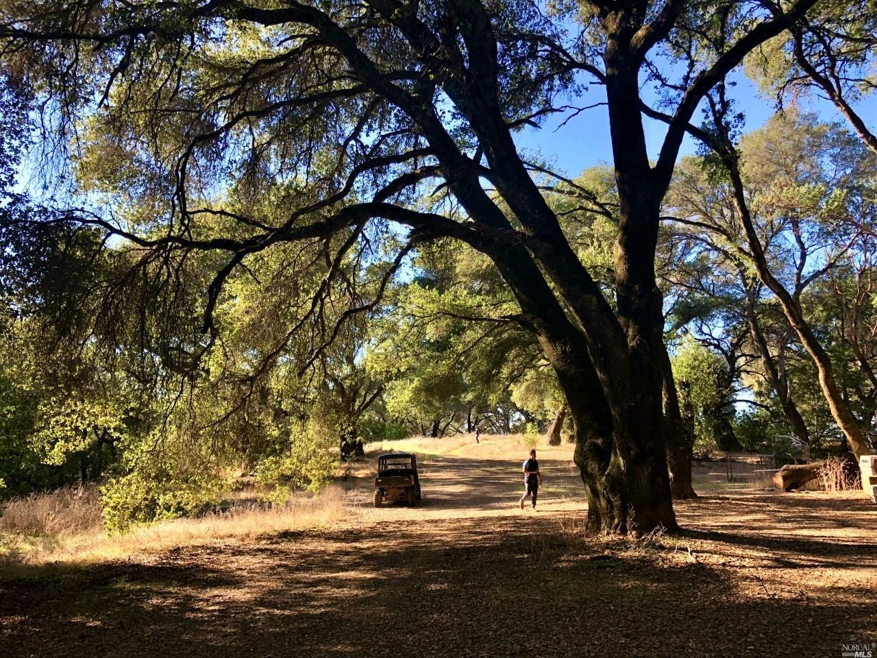 Listing 22009167 : 0  River Road, Cloverdale, CA, 95425  (photo 10)