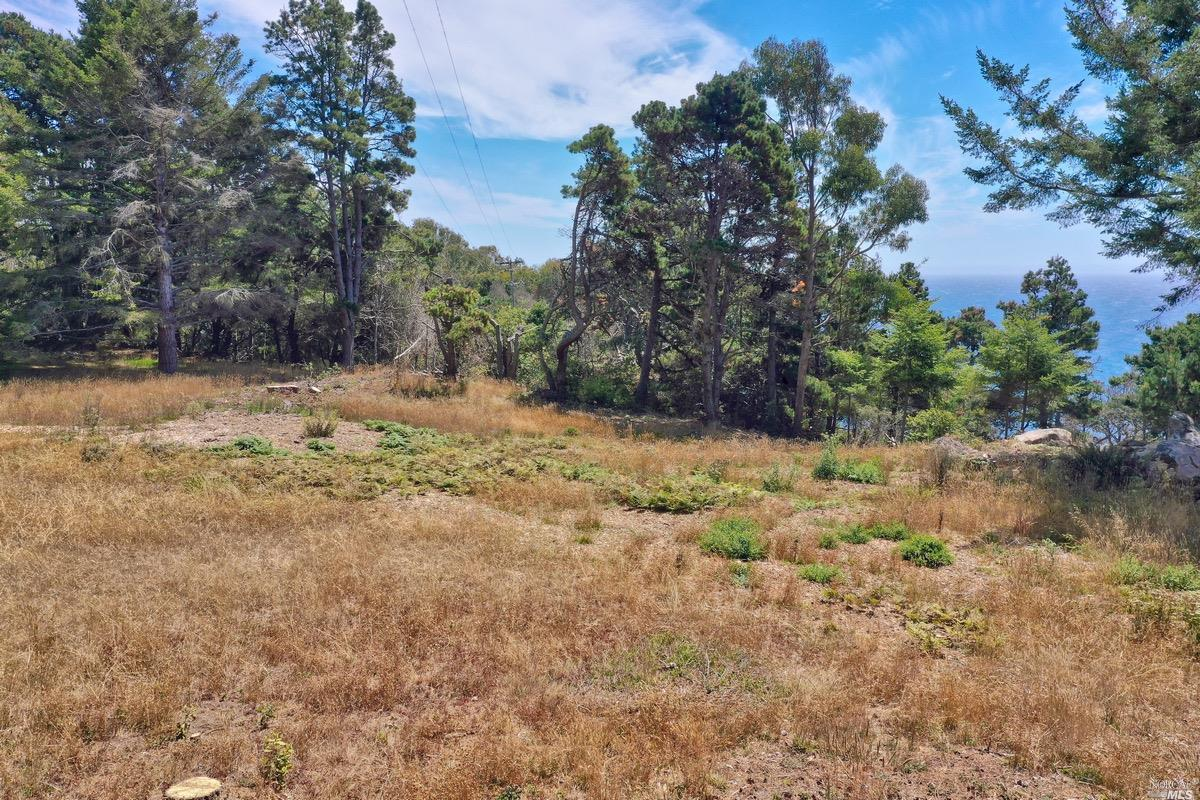 Listing 22020356 : 21950  Timber Cove Road, Jenner, CA, 95450  (photo 2)