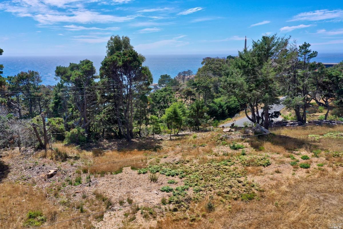 Listing 22020356 : 21950  Timber Cove Road, Jenner, CA, 95450  (photo 1)