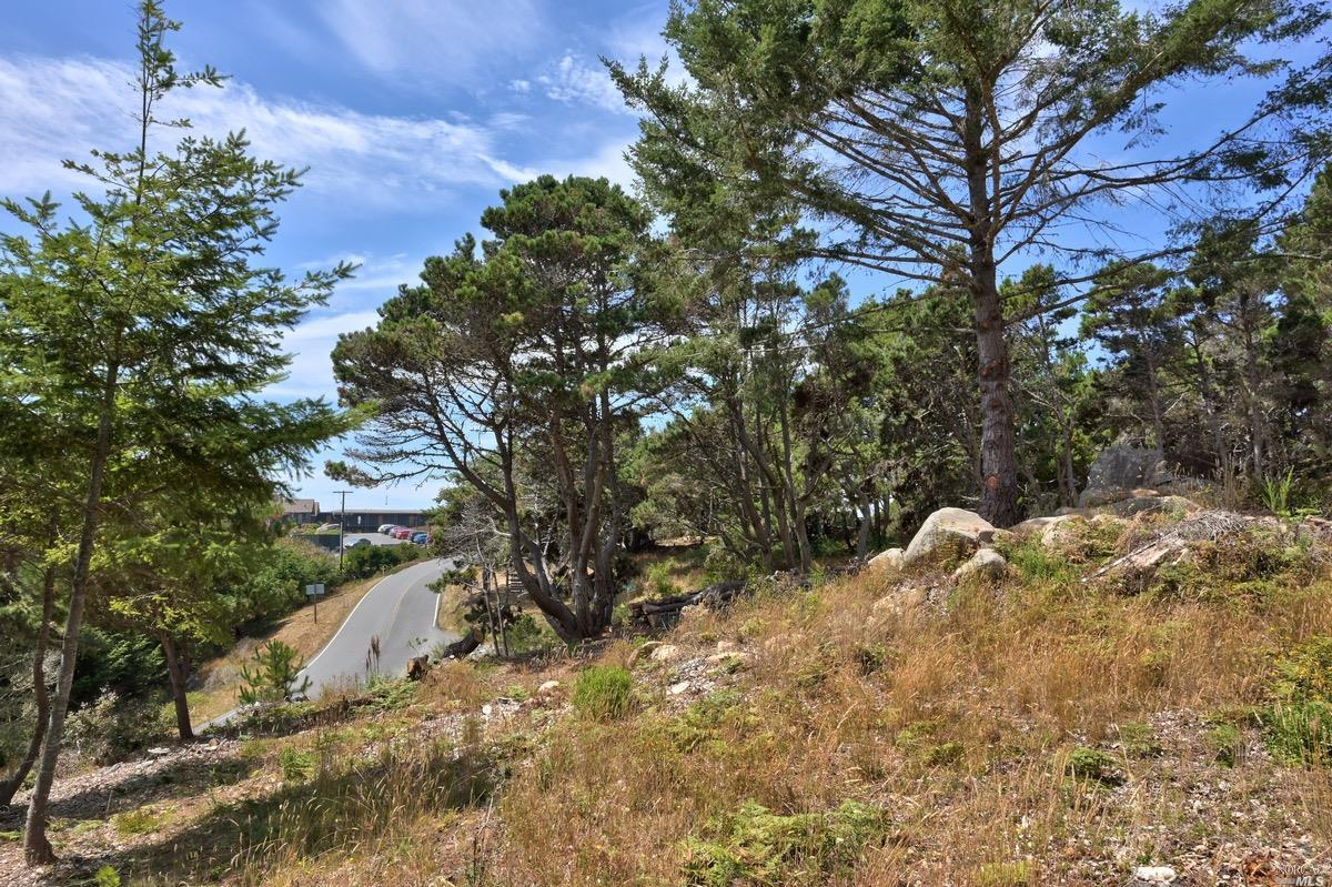 Listing 22020356 : 21950  Timber Cove Road, Jenner, CA, 95450  (photo 20)
