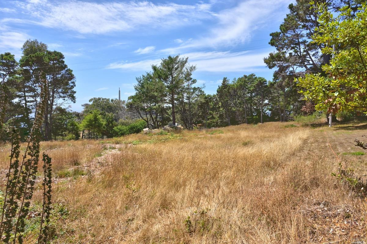 Listing 22020356 : 21950  Timber Cove Road, Jenner, CA, 95450  (photo 19)