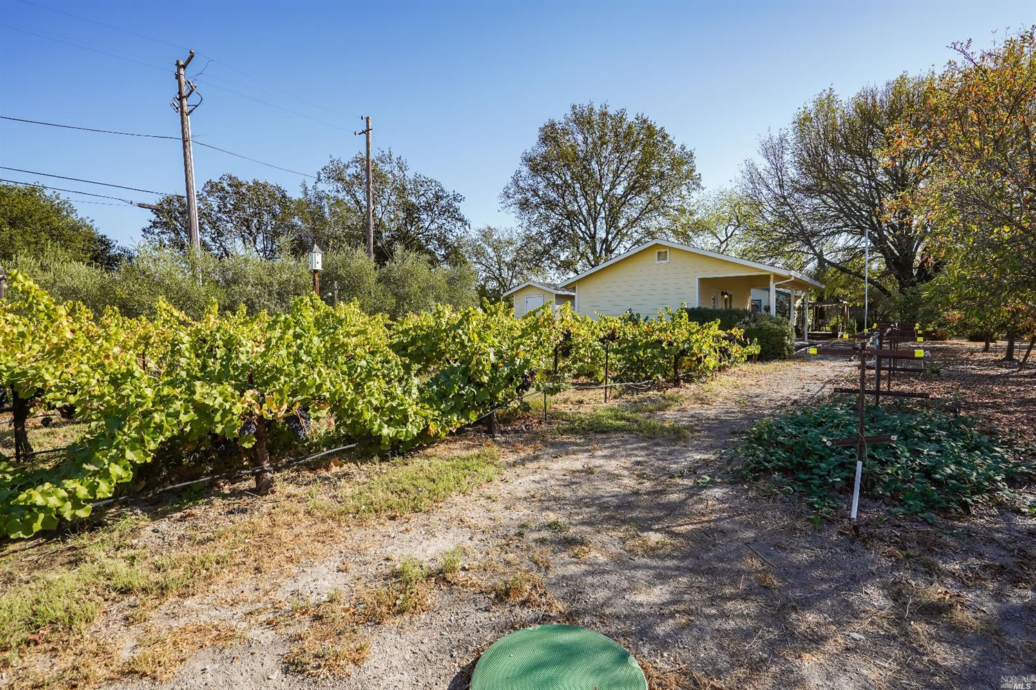 Listing 22022555 : 10377  Hillview Road, Windsor, CA, 95492  (photo 49)