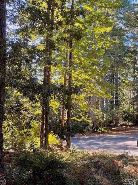 334 Moonraker Road, The Sea Ranch, CA 95497