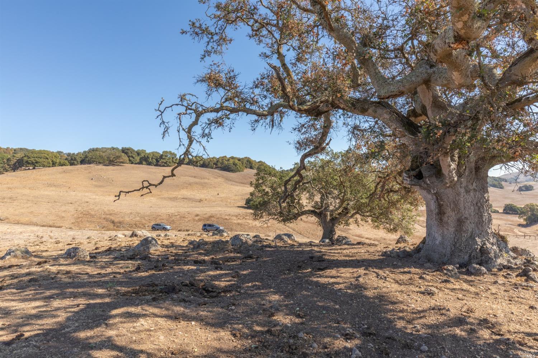 Listing 22027327 : 4695  Old Adobe Road, Petaluma, CA, 94954  (photo 27)