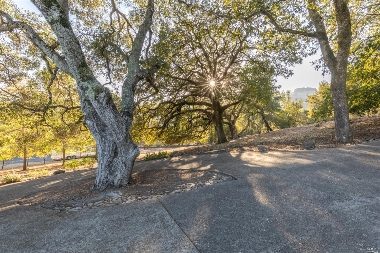 Listing 22028066 : 3430  Hawks Beard Drive, Sonoma, CA, 95476  (photo 32)