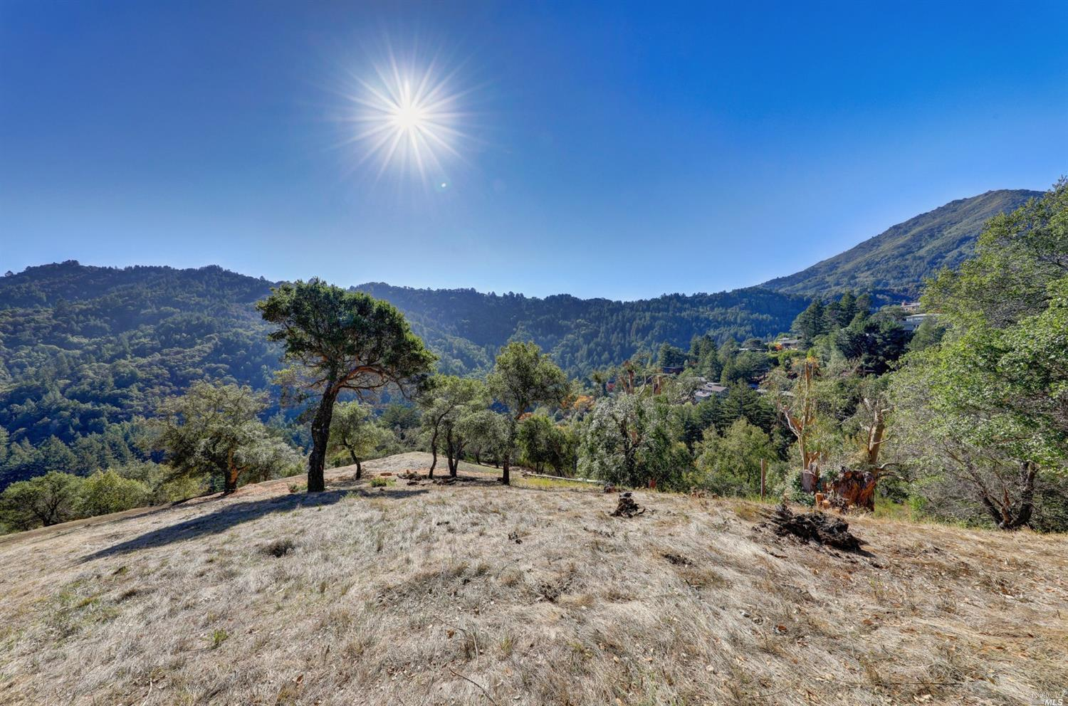 Listing 22025654 : 60  Oak Road, Larkspur, CA, 94939  (photo 8)