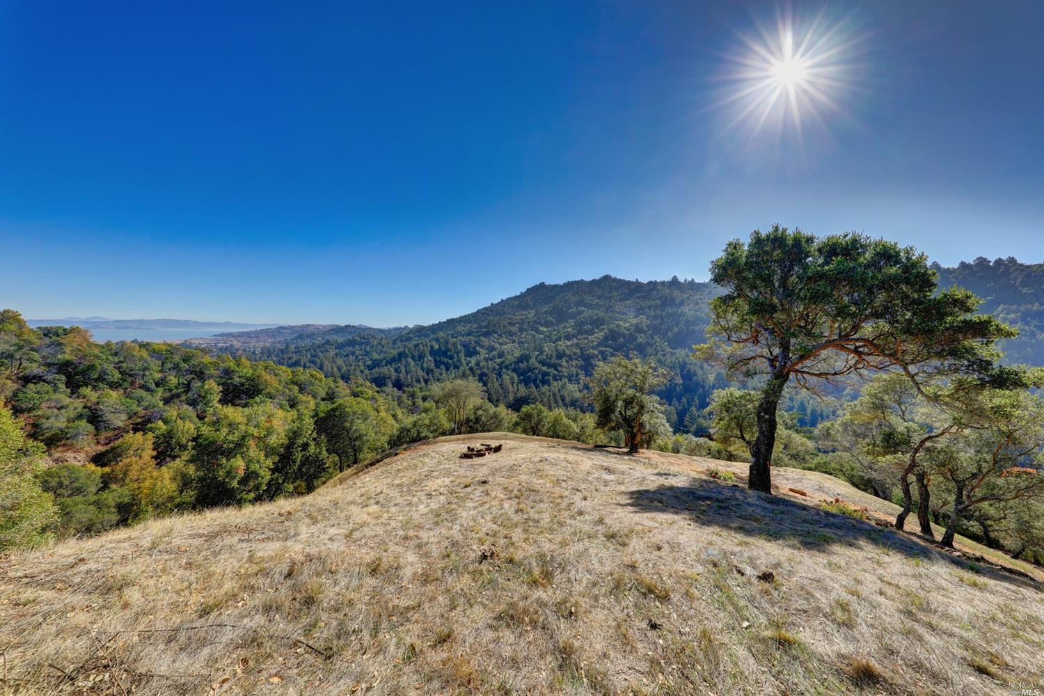 Listing 22025654 : 60  Oak Road, Larkspur, CA, 94939  (photo 9)