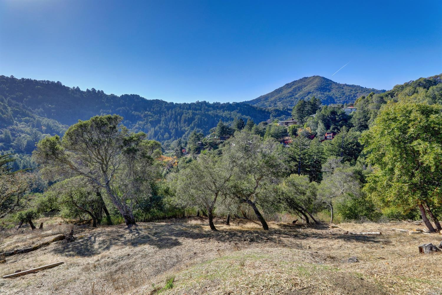 Listing 22025654 : 60  Oak Road, Larkspur, CA, 94939  (photo 6)