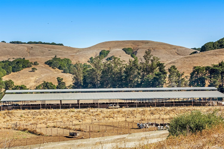 Listing 22030224 : 6701  Red Hill Road, Petaluma, CA, 94952  (photo 12)
