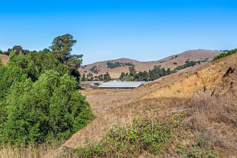 Listing 22030224 : 6701  Red Hill Road, Petaluma, CA, 94952  (photo 21)