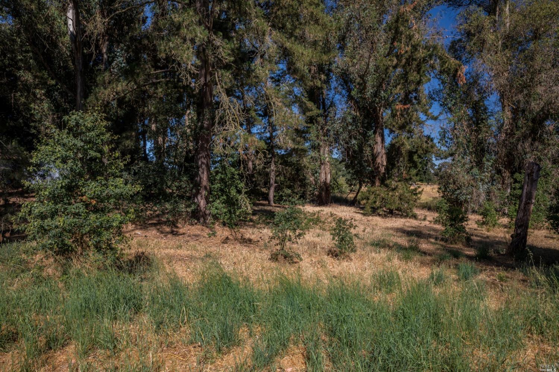 Listing 22031385 : 8772  Lund Hill Lane, Cotati, CA, 94931  (photo 27)