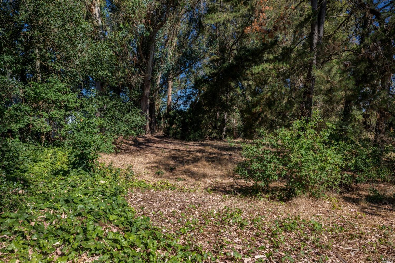 Listing 22031385 : 8772  Lund Hill Lane, Cotati, CA, 94931  (photo 25)