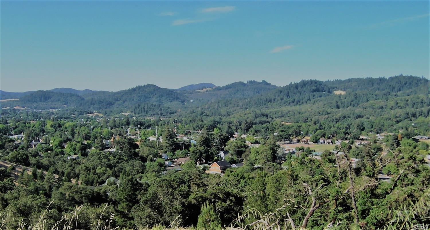 Listing 22031363 : 31200  Hwy 101 , Cloverdale, CA, 95425  (photo 3)