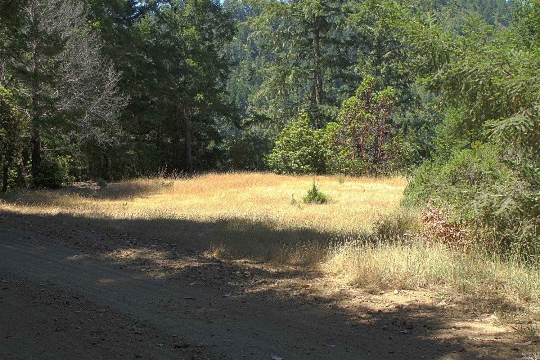 Listing 21700193 : 24500  Meyers Grade Road, Jenner, CA, 95450  (photo 20)