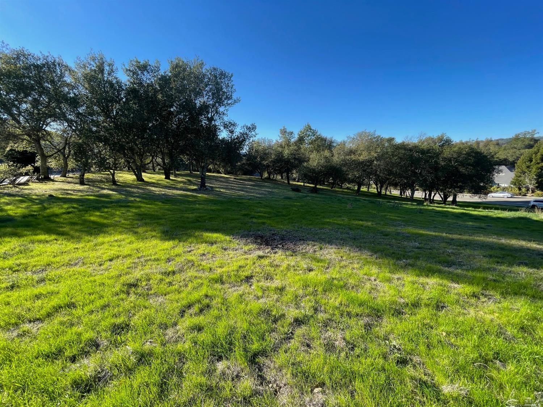 Listing 22033251 : 120  Parkland Farms , Healdsburg, CA, 95448  (photo 3)