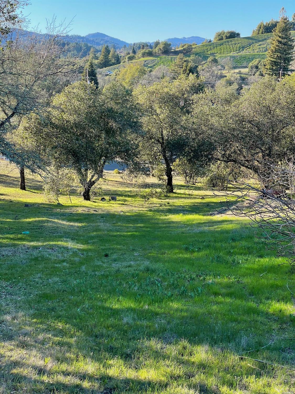 Listing 22033251 : 120  Parkland Farms , Healdsburg, CA, 95448  (photo 8)