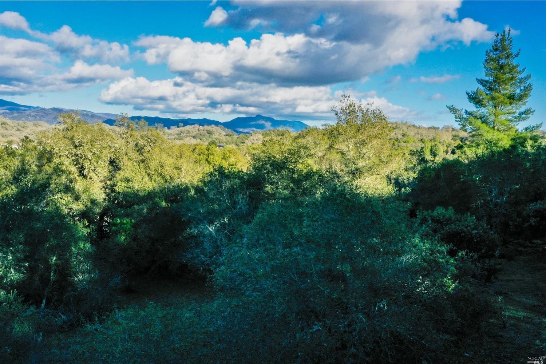 Listing 22033251 : 120  Parkland Farms , Healdsburg, CA, 95448  (photo 15)