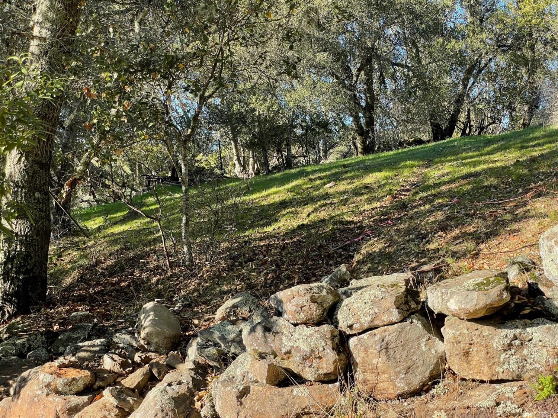 Listing 22033251 : 120  Parkland Farms , Healdsburg, CA, 95448  (photo 4)