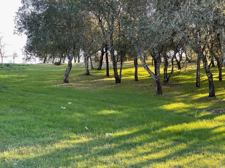 Listing 22033251 : 120  Parkland Farms , Healdsburg, CA, 95448  (photo 6)