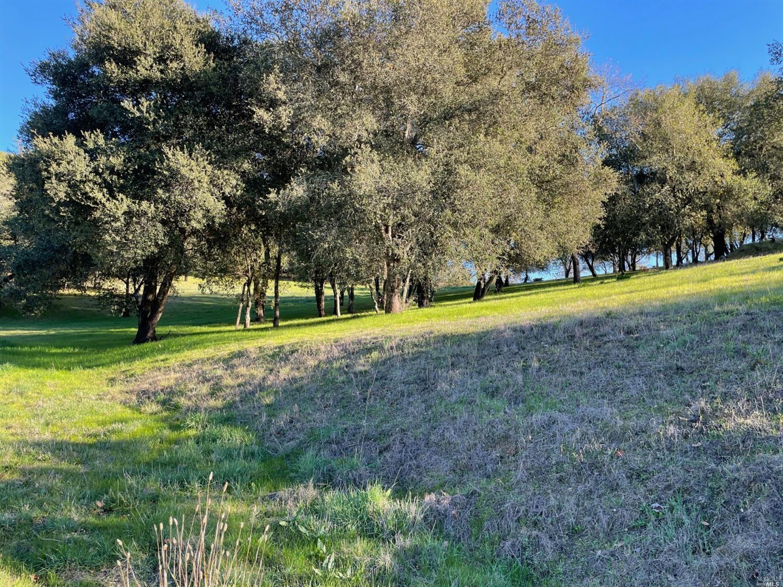 Listing 22033251 : 120  Parkland Farms , Healdsburg, CA, 95448  (photo 9)