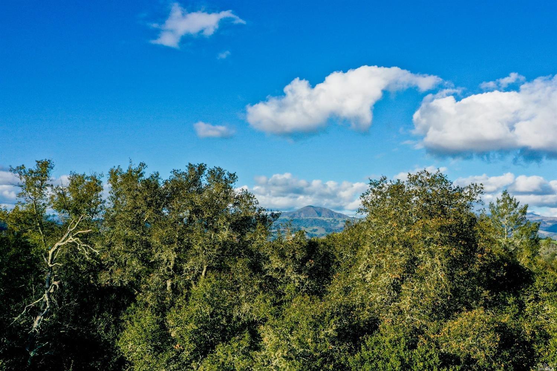 Listing 22033251 : 120  Parkland Farms , Healdsburg, CA, 95448  (photo 7)
