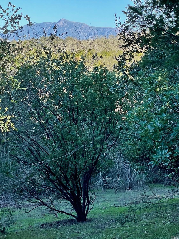 Listing 22033251 : 120  Parkland Farms , Healdsburg, CA, 95448  (photo 10)