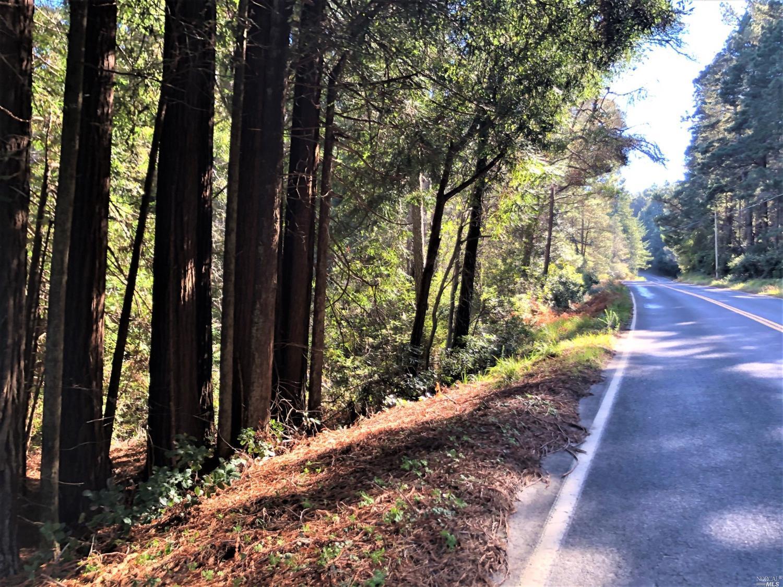 0 Ten Mile Cut Off Road, Point Arena, CA 95468