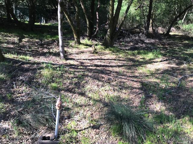 Listing 321006220 : 0-0  Upper Cypress , Fairfax, CA, 94930  (photo 6)