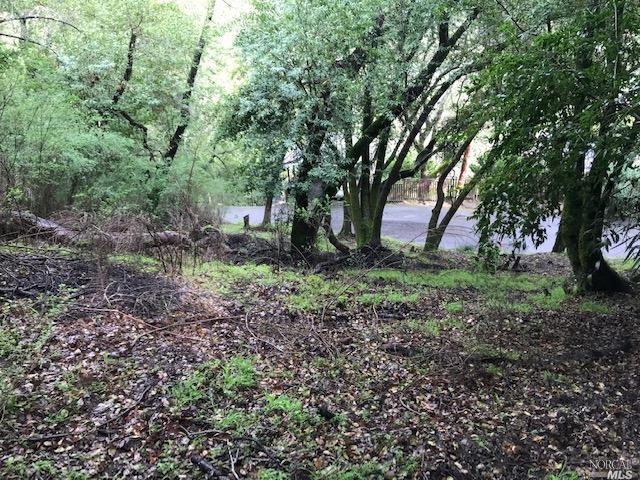 Listing 321006220 : 0-0  Upper Cypress , Fairfax, CA, 94930  (photo 9)