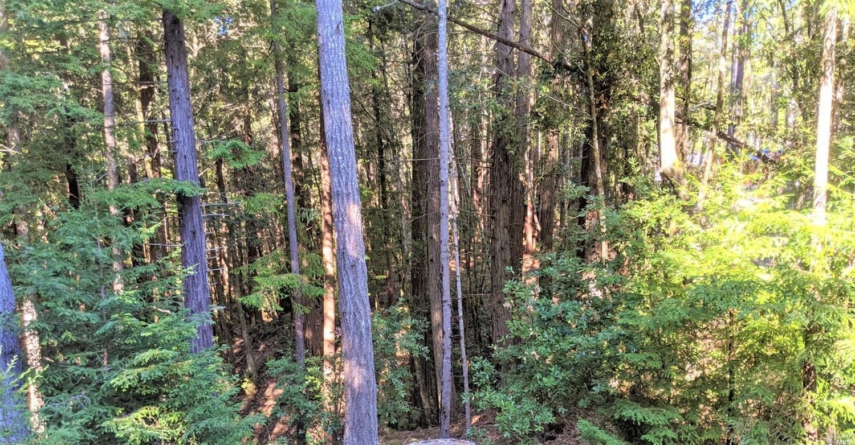 Listing 22028146 : 22093  Ruoff Road, Jenner, CA, 95450  (photo 11)