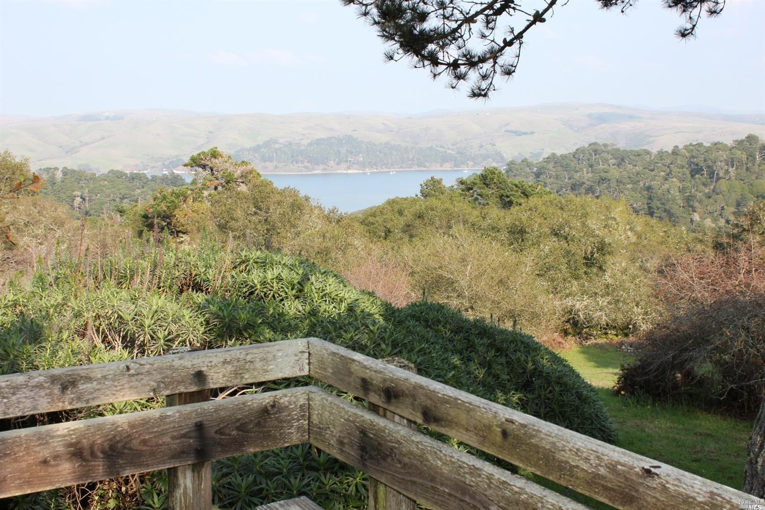Listing 321008957 : 1208  Pierce Point Road, Inverness, CA, 94937  (photo 21)