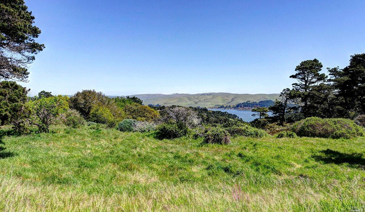 Listing 321008957 : 1208  Pierce Point Road, Inverness, CA, 94937  (photo 27)