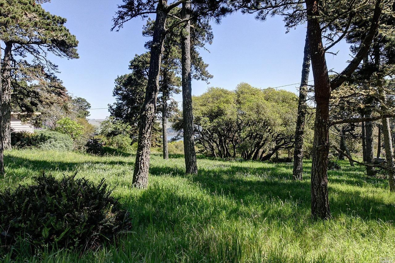 Listing 321008957 : 1208  Pierce Point Road, Inverness, CA, 94937  (photo 24)