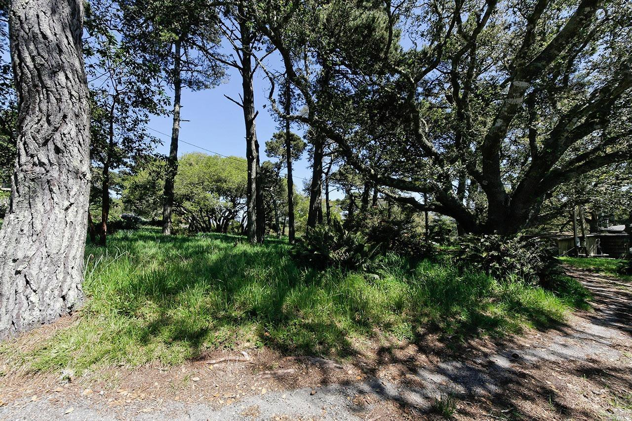 Listing 321008957 : 1208  Pierce Point Road, Inverness, CA, 94937  (photo 23)